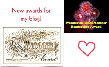 blogawards2