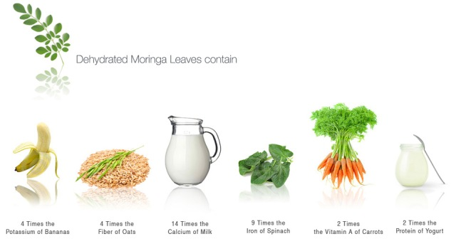 Moringa-ingredients1